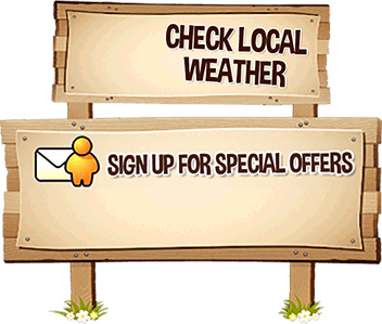 Check Local Weather / Join our newsletter